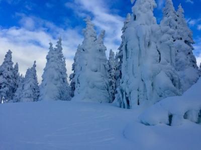 Schneeschuh Dreisessel 1