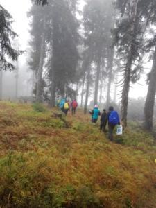 Wanderung Stinglfelsen 09